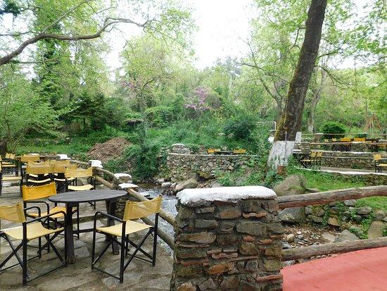 Neo Petritsi, Greece: Μια ακόμη γωνιά της Όασης.