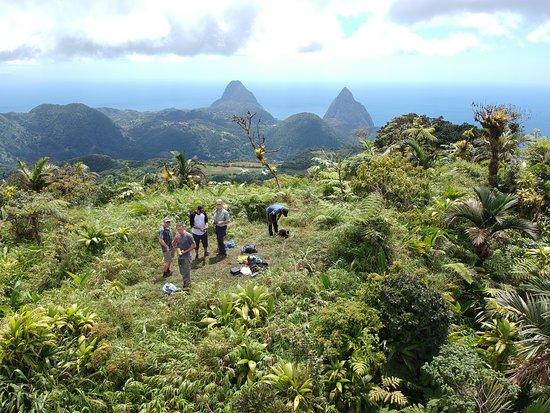 Mount Gimie照片