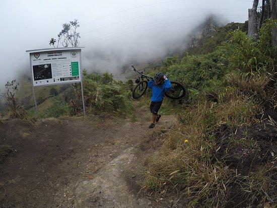 Regiones Bike