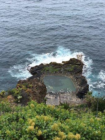 Un aperçu des visites dans puerto Cruz