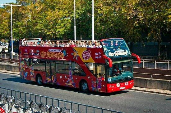 Excursión en autobús turístico con...