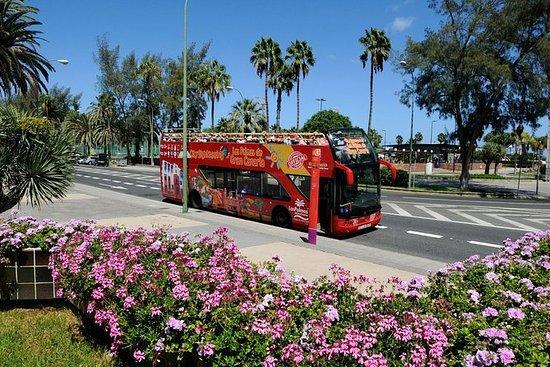 Tour Panoramico della Città di Las