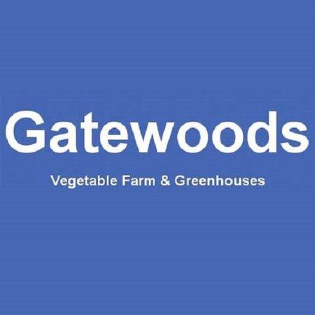 Gatewood Vegetable Farm & Greenhouses, Inc.