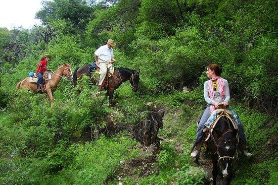 Pernottamento a cavallo avventura