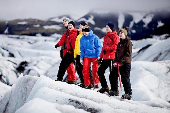 Small Group Glacier Walk og Northern...