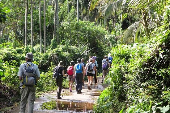 THE 15 BEST Things to Do in Matale - 2019 (with Photos) - TripAdvisor