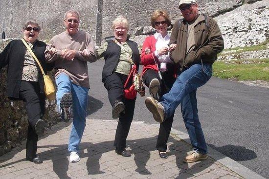 岸边游览从Cobh(科克)到布拉尼城堡,科克市和金塞尔