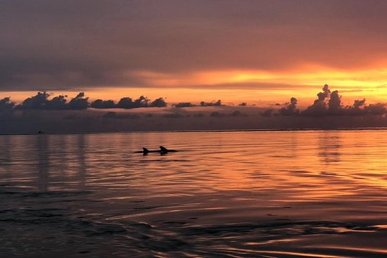 Sunset Kayak Adventure Tour con