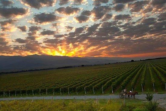 En dagstur til Kakheti (Wine Tour)