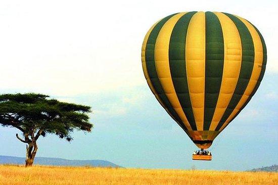 Gnukalbensaison Februar & März | 8 Tage: Day-8 Wildlife & Balloon Safari