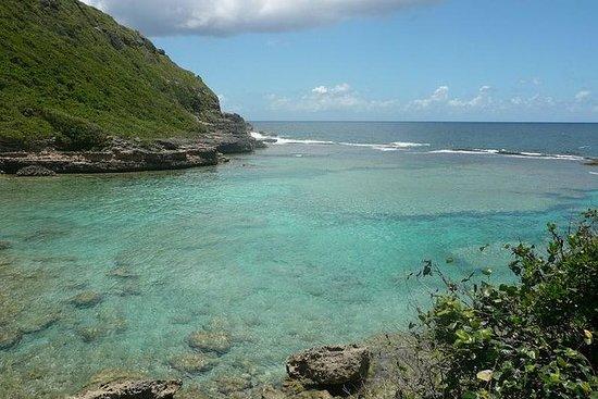 Sud Basse-Terre Excursion Visite...