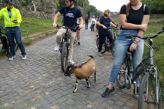 E-bike tour en verhuur in Orvieto en ...