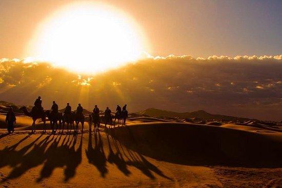 マラケシュからフェズまでの3日間のメルズーガ砂漠ツアー - 小グループツアー