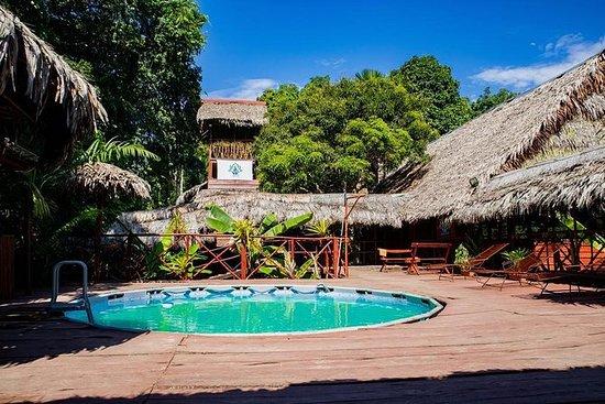 3-dagers Amazon Jungle Tour på Avatar...