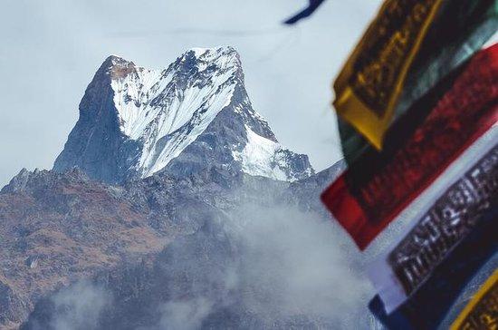 Annapurna Base Camp Trekking - 10 Days