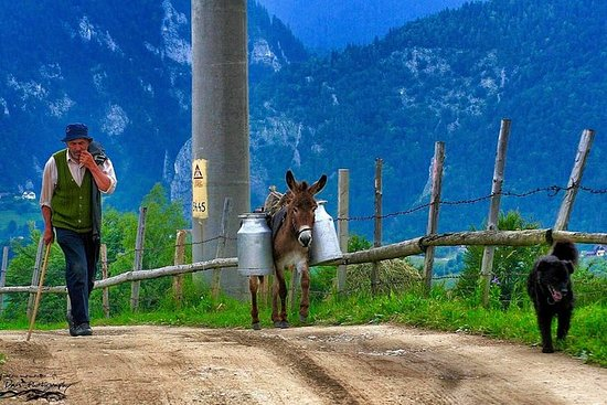 Gamla byar i Karpaten och Libearty ...