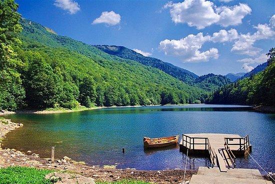 NP Biogradska Gora y el cañón Moraca