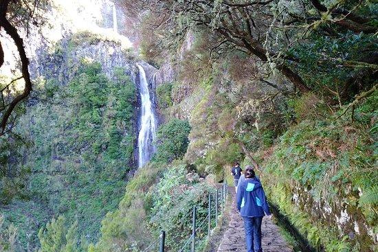 The Fantastic Cascades