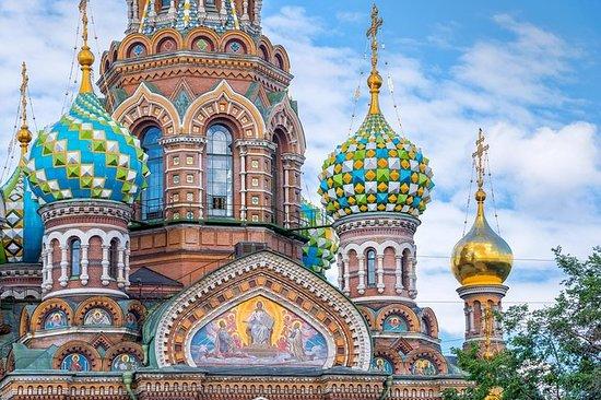 Saint-Pétersbourg: visite privée...