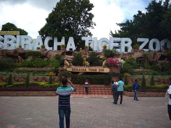 sriracha tiger zoo main gate