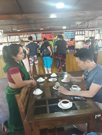 Kingfisher Tours Sri Lanka: Tea Hubs Of Srilanka