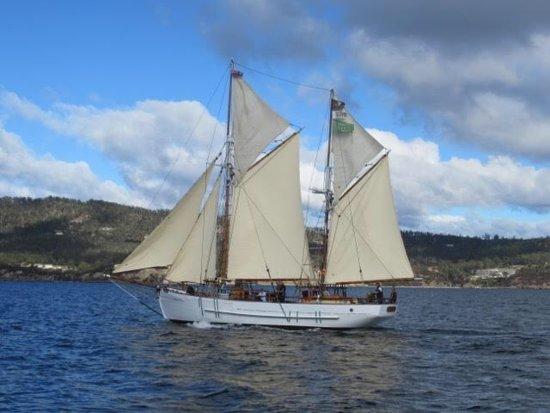 Highlight Of Wooden Boat Festival 2019 Sv Rhona H Hobart