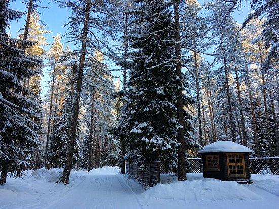Lesnaya Obitel: Загородный клуб зимой