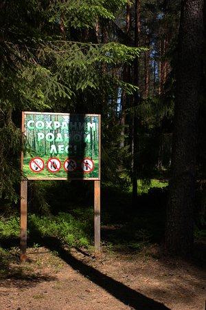 Lesnaya Obitel: Загородный клуб летом