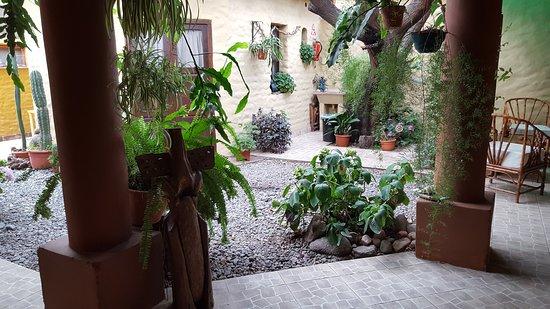 jardin.