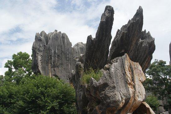 Yunnan Stone Forest Geological Park: La foresta di pietra nei pressi di Kunming