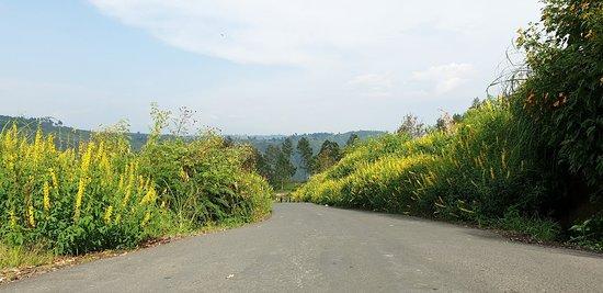 Bukit Gajah Bobok