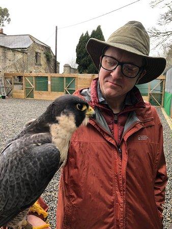 Jason and the peregrin falcon