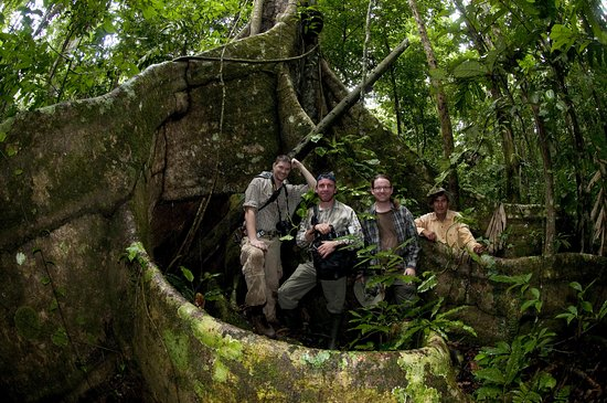 Madidi National Park, Βολιβία: And you, which kind of explorer are you ?