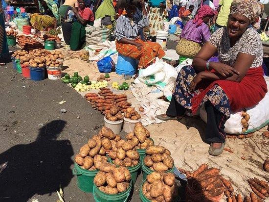 Hillside Retreat – Africa Amini Life Picture