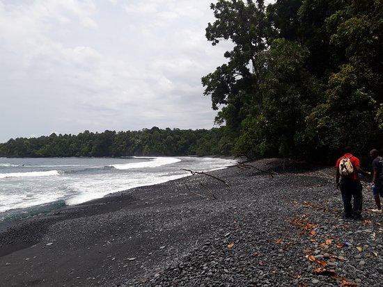 Bioko Island, อิเควทอเรียลกินี: Me fascinó descubrir un paisaje tan hermoso. Recomiendo este lugar a totos aquellos que quiera nestar en contacto con la naturaleza pura. Es un paraíso perdido al sur de Guinea Ecuatorial. Con la agencia Safari todo foi bien organizado y el guía me contó mucho sobre la Isla