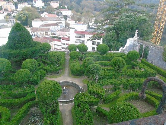 Sintra National Palace: Princes' garden