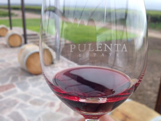Excelente vinícola
