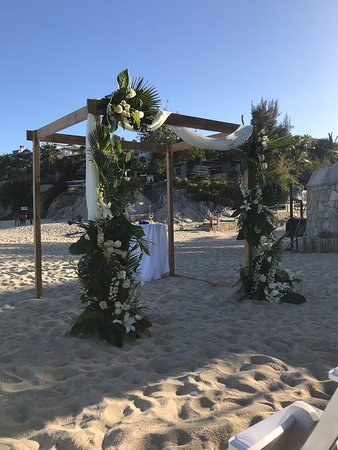 Just had my daughter 's wedding at the Cabo Surf Hotel in San Jose del Cabo, Mexico! It was perfect from start to finish. My guests and I enjoyed a fabulous week on the pristine beach watching surfers, drinking & eating delicious food from the fabulous Seven Seas restaurant & enjoying all the amenities of this awesome boutique hotel. It is a hidden gem!  We want to thank the owner, Mr. Balderrama & his incredible staff for making all our dreams come true!!! Simply magnificent!