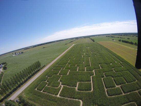 Labyrinthe de maïs géant Huge corn maze