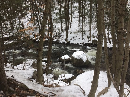 Glastonbury, CT : the stream