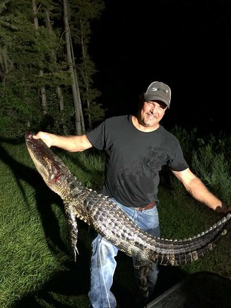 5 Rivers Adventures: Offer gator hunting (seasonal)