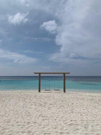 Lily Beach Resort & Spa: Swings by the Beach
