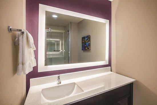 La Quinta Inn & Suites by Wyndham Dallas Northeast-Arboretum: Guest room