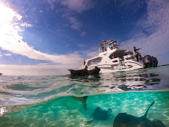 Exuma Water Sports: Pigs and Stingrays!