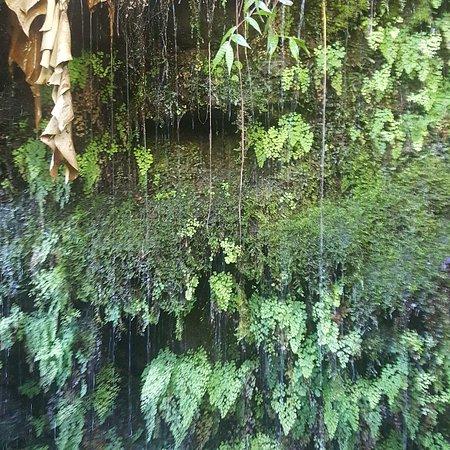 05165227d6 Aloha Eco Adventures (Kahului) - 2019 All You Need to Know BEFORE ...