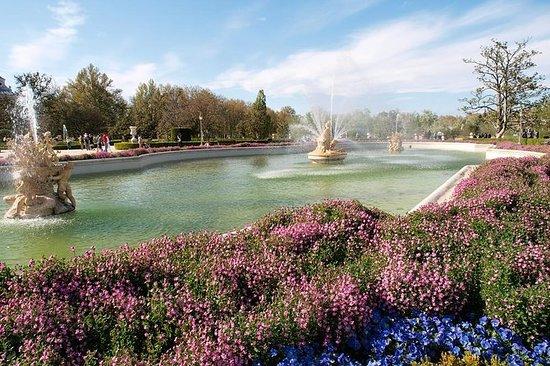 Visita desde Madrid al Palacio Real...