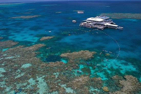 Crucero de Snorkel de la Gran Barrera...