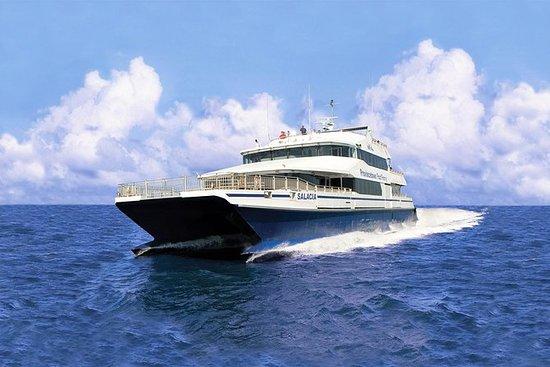 Excursión de ida y vuelta en ferry...