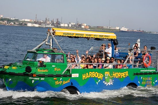 Excursión en el puerto Hopper en...