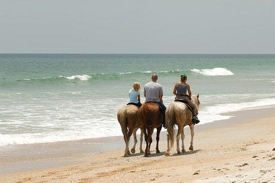 Tour in spiaggia per piccoli gruppi a